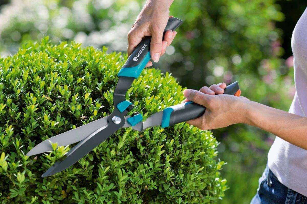 Как выбрать садовые ножницы, топ-10 лучших моделей